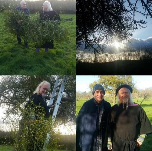 Mistletoe OBOD Winter Gathering